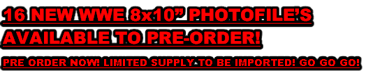 "16 NEW WWE 8x10"" PHOTOFILE'S